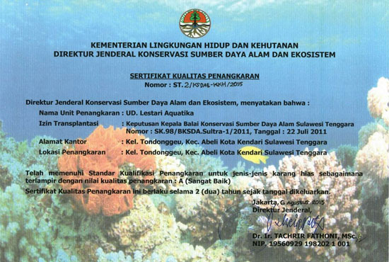 Certificate Quality Corals in Captivity